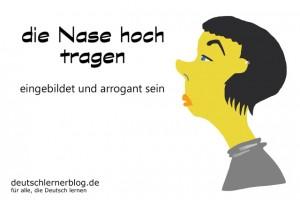 Nase hoch tragen - hochnäsig - Redewendungen Bilder deutschlernerblog