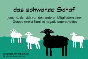 das-schwarze-schaf-Redewendungen-Bilder-deutschlernerblog