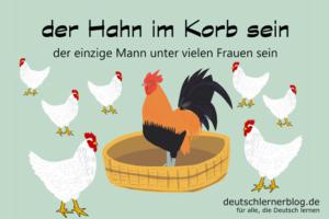 der-Hahn-im-Korb-sein-Redewendungen-Redensarten-deutschlernerblog