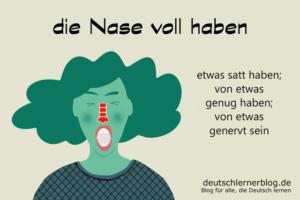 die-Nase-voll-haben-Redewendungen-Redensarten-deutschlernerblog