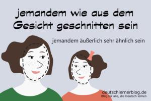 wie-aus-dem-Gesicht-geschnitten-Redewendungen-deutschlernerblog