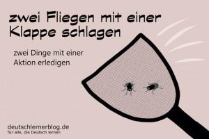 zwei_Fliegen_Redewendungen_Bilder_deutschlernerblog