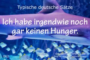 deutsche Sätze 062 irgendwie keinen Hunger deutschlernerblog 640